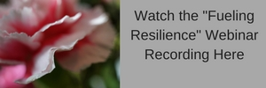 Webinar Recording: Fueling Resilience—Human Energy Sustainability in Organizations